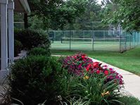 tennisct
